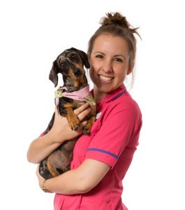 image of woman with dog for YourVets website design case study