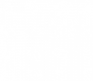smoke haus illustrated icons