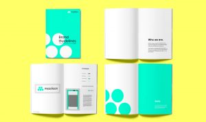 A mockup of Mesolean brand guidelines