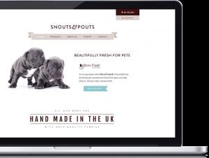 A mockup of Snouts & Pouts website